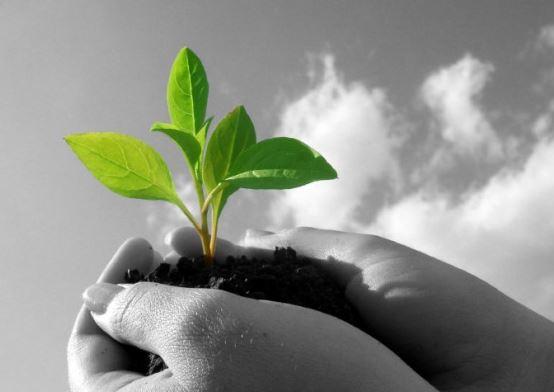 politicas-calidad-ambiental