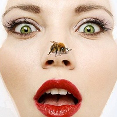 Veneno de abeja, la alternativa natural al botox