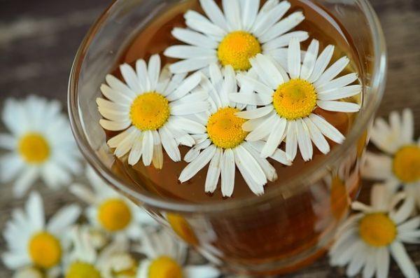 productos-y-remedios-caseros-para-el-pelo-graso-manzanilla