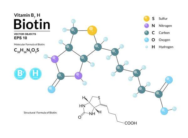 Biotina para el cabello efectos secundarios cadena