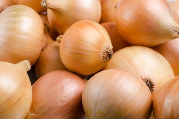 Review mas profunda sobre champu sin sulfatos cebolla dalire