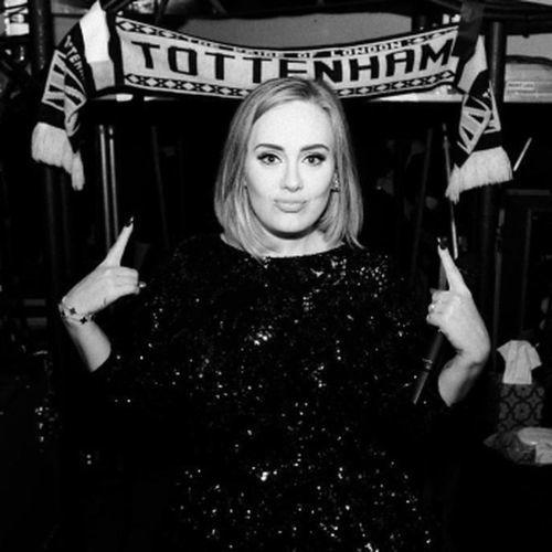 Adele corte de pelo media melena