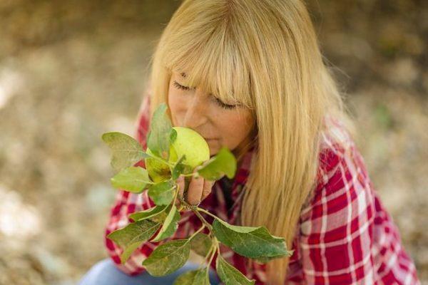 menopausiala-perdida-de-estrogenos