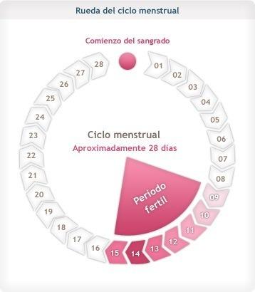 tecnicas fertilidad para lograr embarazo