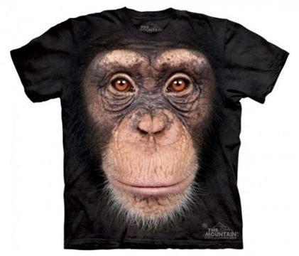chimpance_lg