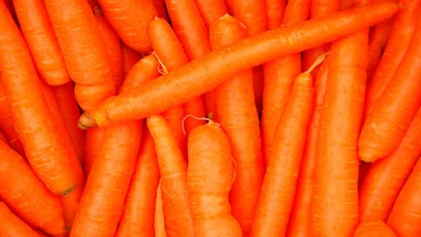 tintes-vegetales-aprender-hacer-tinte-zanahoria
