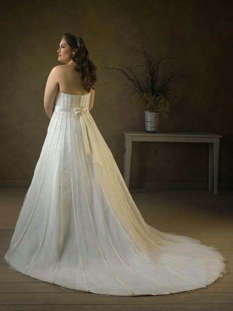 wedding-dresses-for-chubby-autumn-winter-2017-tail